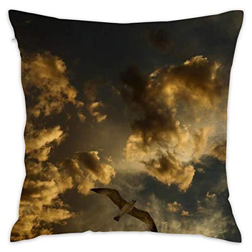 Butlerame Throw Pillow Cover Cloud Bird Bed Sofá Funda de Almohada Almohada para Dormir Cojín Suave 18 'X 18'
