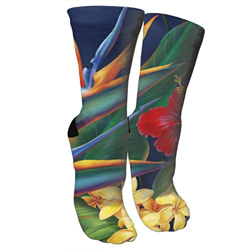antfeagor Throw Pillow Cover Floral Bird Tropical Paradise Hawaii Decorative Compression Socks,Crew Athletic Sock-Best Graduated Athletic & Medical for Men & Women, Running, Flight, Travels