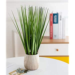 AlphaAcc Artificial Potted Plants 15in. Greenery Faux Grass Topiary,Small Indoor Accent Farmhouse Home Decor for Office Desk Nightstand and Outdoor Garden Decorations