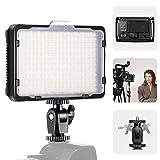 Neewer 176S - Pannello LED con luci video a LED SMD, regolabile per videocamera con fotocamera DSLR 3200K-5600K, filtro bianco e schermo LCD (batteria non inclusa)
