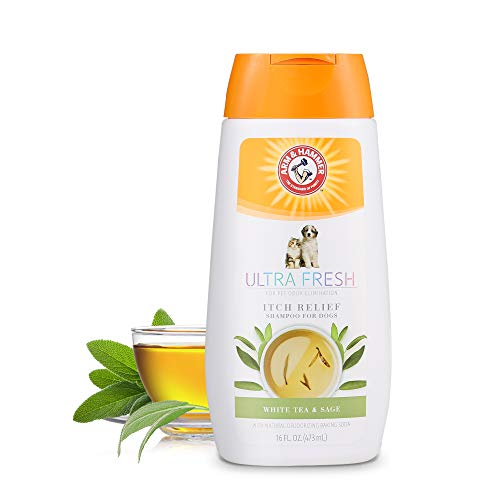 Arm & Hammer Ultra Fresh Shampoos, Conditioners, and Sprays for Dogs | Baking Soda Neutralizes Bad Odors for an Advanced Clean
