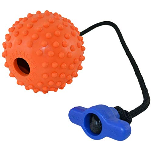 Ray Allen Ball on a Rope - Professional Quality Dog Training Ball - Orange 3' Diameter with Tee Handle