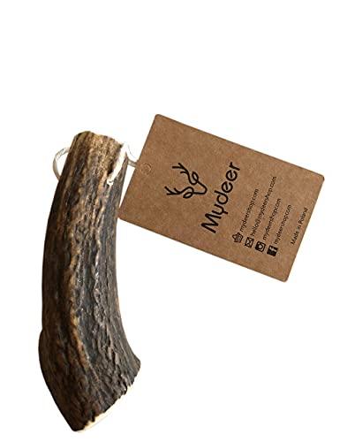 MyDeer Geweihstück, Hirschgeweih für einen Hund, Natürlicher Kauknochen, Kauspielzeug für Welpen 100% Geweih Beißringe, Kalziumknochen für Hunde - viele Größen, Hundeknochen (1 Stück, XL)