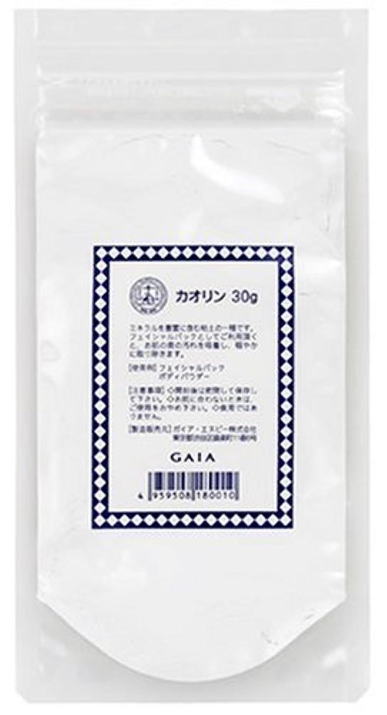 イーウェル媒染剤に対してガイア カオリン 30g