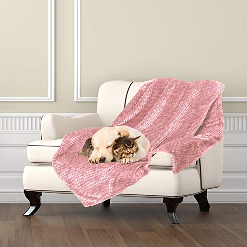 Msicyness Hundedecke, Premium Fleece, flauschige Decke, weiche und warme Decken für Haustiere Hunde und Katzen L(40x47 inches) rose