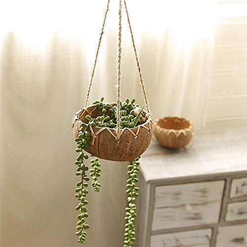 Wankd Blumentopf Wand, Wandvase & Kokosnuss Schale Deko – Übertopf Für Zimmerpflanzen, Sukkulenten, Luftpflanzen, Kakteen, Kunstpflanzen und Mehr (Braun)