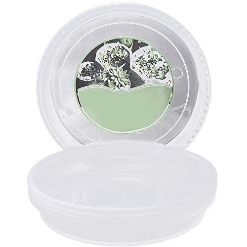 LONGJUAN-C Clear Plant Saucers in Thick Flower Pot Saucers in 13.2 Inches Round Plant Tray Waterproof for Drips Recycle Indoor or Balcony (6 Packs) Porcelain
