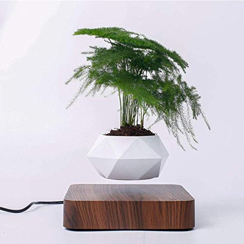 PHLPS Magnetic Levitation Suspension Floating Pot, Levitating Air Bonsai Pot, Planters Magnetic, Automatic Rotation Planters, Potted Plant Home Desk Decor (Color : Brown)