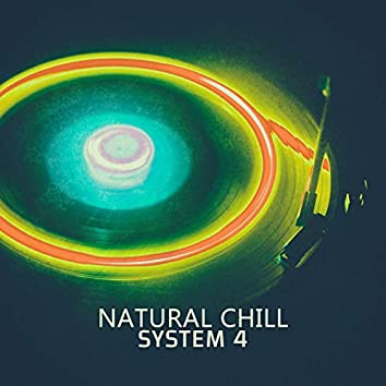 Natural Chill - EP