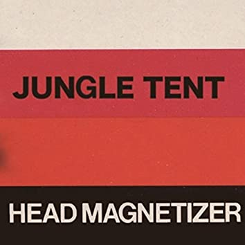 HEAD MAGNETIZER