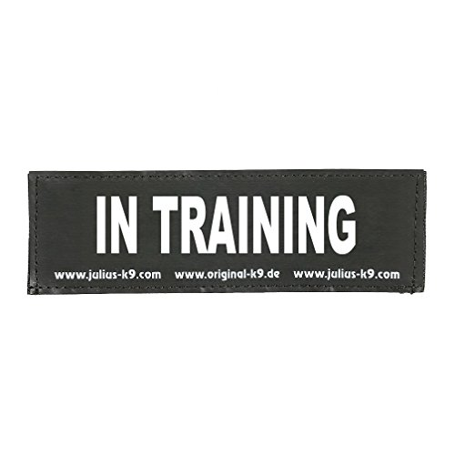 Julius-K9 162LR-K-42440 Klettaufschrift, In Training, klein, schwarz