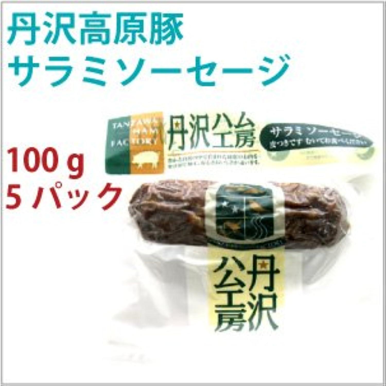 無添加 サラミ 丹沢高原豚 サラミソーセージ 100g 5パック