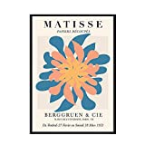 Carteles e impresiones de estilo Matisse,cuadros abstractos de desnudos de plantas,cuadros decorativos en lienzo sin marco para el hogar A 50x75cm
