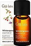 Gya Labs Wintergrün Ätherisches Öl für Schmerzlinderung - Reine Wintergrün Öl für Atmung - 100 Naturreine für Diffuser Aromatherapie, Aromaöl und Duftöl - 10ml