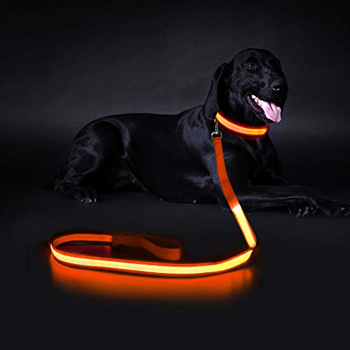 MASBRILL LED Dog Leash, USB Rechargeable Flashing Light Leash, 4Ft, IPX7 Waterproof Safety Leash, Avoid Danger for You and Your Pet at Night