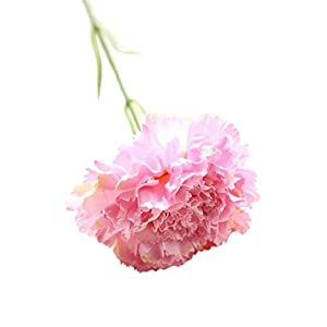 Vibola Artificial Fake Flowers Carnations Floral Wedding Bouquet Party Home Decor 1PC DIY Fresh Flower Carnation Silk Plant for Mother's Day Decoration(Vase not Included (Pink)