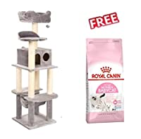 Ideal for multi-cat households and for young, boisterous cats Sturdy construction on four posts: to ensure optimal stability, Light Grey Four different levels: for varied entertainment Two plush toys: dangle on ropes to encourage your pets to play So...
