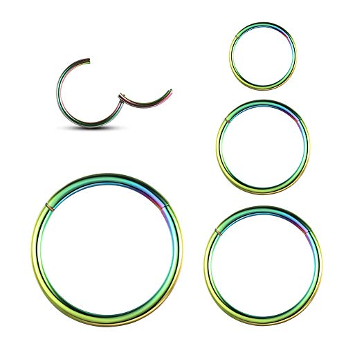 WBRWP 4Pcs 14G(1.6MM) Seamless 316L Stainless-Steel Piercing-Ring Hinged Daith-Rings-Hoop : Womens and Mens Body Pierecing Ring Rook Earrings Diameter 6mm 8mm 10mm 12mm(Each Dia 1 pc) Rainbow Color