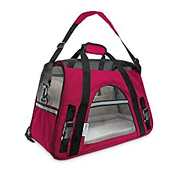 Stylish airline approved pet carrier by Paws and Pals