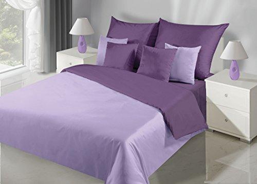 DecoKing 200x220 erikafarben Silber Bettwäsche Bettwäscheset mit 2 Kissenbezügen 80x80 Bettbezüge Baumwolle Bettwäschegarnituren 3 TLG. zweiseitig