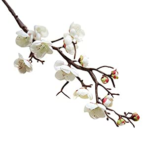 Nuxn 5 Pcs Artificial White Plum Blossom Long Stem Plastic Simulation Cherry Blossoms Branches Fake Flowers Silk Peach Flowers Floral Wedding Bouquet Arrangements Home Decor
