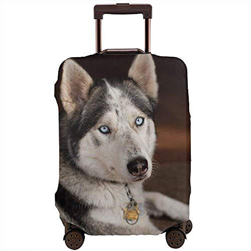 Husky Dog Frontal Portrait Protector de la Cubierta de la Maleta Impermeable Love Bones Protector de la Caja del Carrito elástico Talla L