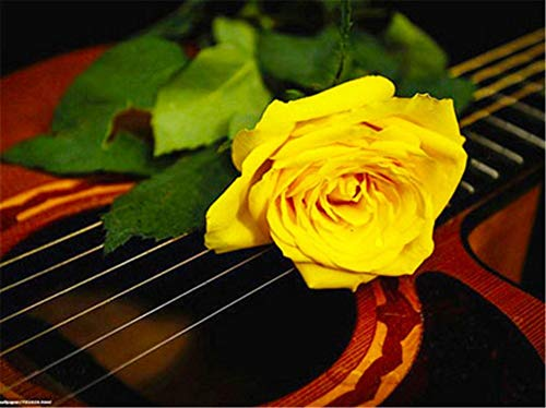 DIY 5D Pintura Diamantes Kits Guitarra rosa amarilla Diamond...
