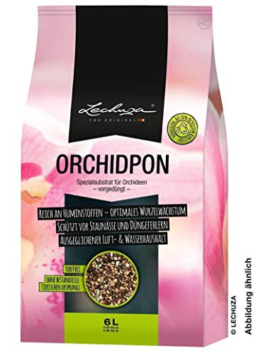 LECHUZA ORCHIDPON 3 litros Macetero, neutro