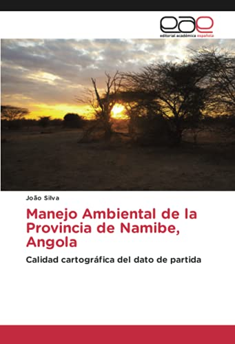 Manejo Ambiental de la Provincia de Namibe, Angola: Calidad cartográfica del dato de partida