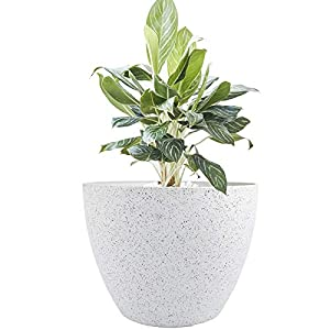 LA JOLIE MUSE Large Planter Pot Indoor Outdoor – 14.2 Inch Tree Planter Flower Pot, Planters Container with Drain Holes (Speckled White)