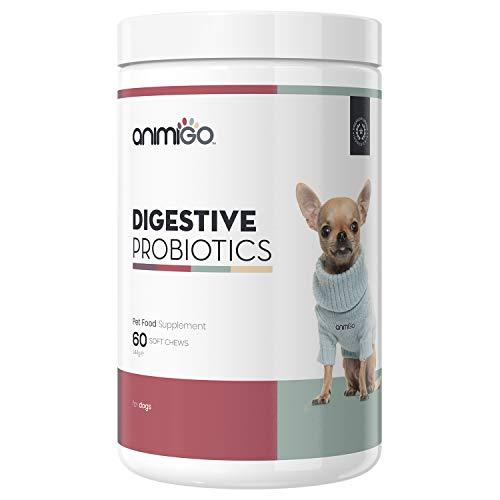 Probiotika Leckerlies für Hunde - Für die Verdauung & Darmsanierung beim Hund, Magen-Darm & Darmflora Aufbau, Probiotikum gegen Durchfall, Immunsystem stärken mit gutartigen Darmbakterien - 60 Stk.