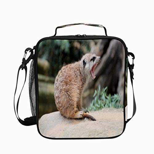 Meerkat Tooth Yawn Fur Premium Insulated Lunch Box Spacious Durable School Lunch Bag for Kids Boys Girls Reusable Leakproof Cooler Tote Bag with Removable Shoulder Strap for Adults Men Women