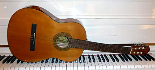Francisco Santana LC-020G Viva 4/4 Classic Gitarre