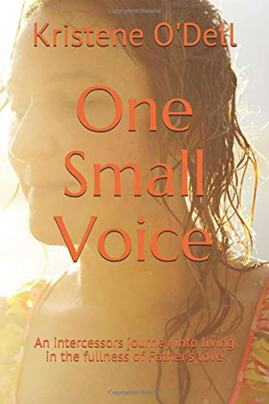 One Small Voice: An intercessors journey into living in the fullness of Father's love
