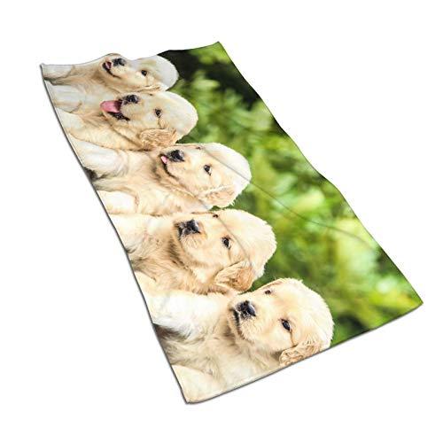 Toallas de baño para cachorro, de secado rápido, de alta absorción, de algodón súper suave, de alta calidad, para piscinas, cocinas de hotel (30,5 x 60,5 cm)