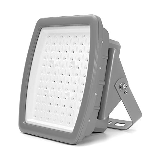 200W LED Floodlight Explosion-Proof Industrial Waterproof Outdoor Gas Station Airport Flood Light 100-277V 5000K (200)