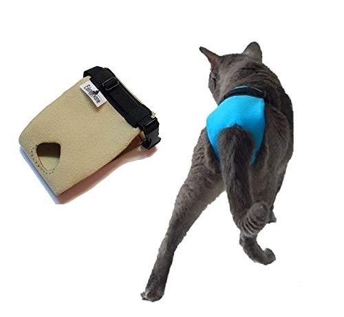 Culotte pour chat incontinent urinaire - La culotte EXPRESS, fabriquée en France par EDENVANE (permet la défécation en litière)