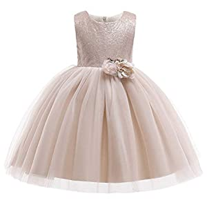 (フォーペンド)Forpend DR89 子供の発表会のドレス 女の子 花付きフォーマル 結婚式 子供服110 120 130 140 150 cm プリンセスドレス (120cm)