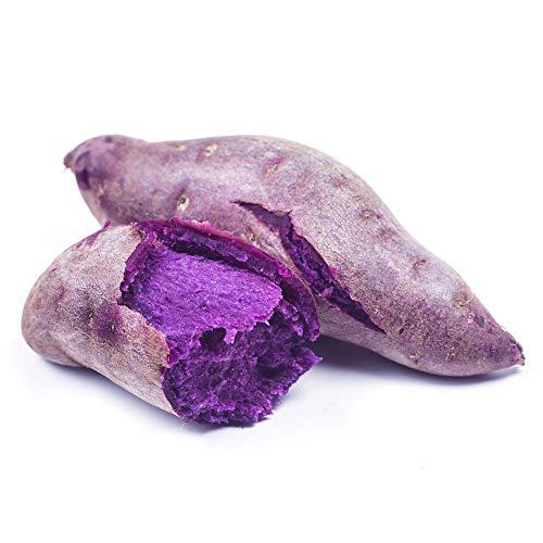 sudalv1971 50 Unids Semillas De Patata Dulce Púrpura Nutrición Deliciosas Semillas De...