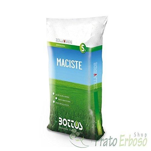 Sementi Maciste - 5 Kg