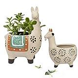 Ceramic Animal Succulent Planter Pots - 6.1 + 4.5 inch Cute Alpaca/Llama & Goat Rough Pottery Unglazed Desktop Flower Plant Pots Indoor with Drainage for Herb Cactus Air Plants, Home Decor Gifts