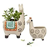 Ceramic Animal Succulent Planter Pots - 6.1 + 4.5 inch Cute Alpaca / Llama & Goat Rough Pottery Unglazed Desktop Flower Plant Pots Indoor with Drainage for Herb Cactus Air Plants, Home Decor Gifts