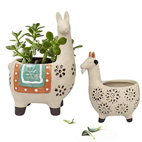 La Jolíe Muse Keramik Tier-Blumentöpfe, raue Töpferei unglasierte Pflanzentöpfe, Innennutzung mit Abflussloch für Kräuter, Kakteen, Sukkulenten, Geschenk