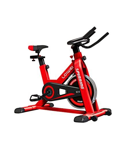 Wonduu Bicicleta Spinning Indoor con Volante de Inercia de Acero Inoxidable de 6 Kg | Bicicleta Estática Resistente con Monitor de Control
