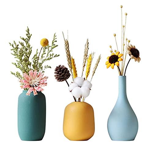 TDHLW Juego de 3 jarrones de cerámica pequeños con flores secas, jarrón pequeño para el hogar, sala de estar, centros de mesa y eventos, color blanco