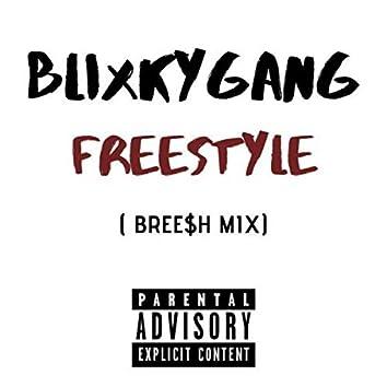 Blixky Gang Freestyle (Bree$h-Mix)