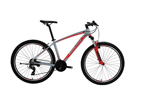 T&Y Trade 27,5 Zoll Herrenrad Herren Jugend MTB Fahrrad Mountainbike Jugendfahrrad 21 Gang Shimano Bike Rad Gabelfederung Federgabel Beleuchtung 7100 rot grau