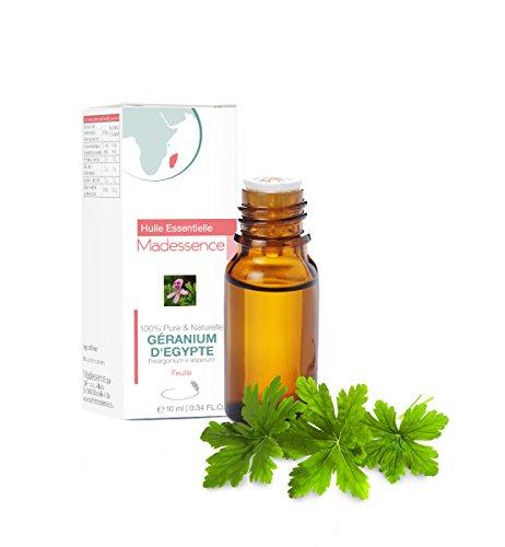 Egyptische geranium – 10 ml – Pelargonium asperum