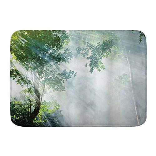Minalo Tapis de Sol Salle de Bain, Rayon de Soleil de la forêt Tropicale Entre Les Ombres des Arbres Paysage idyllique de la Solitude dans Le thème de la Jungle,Tapis de Bain, 75x45cm