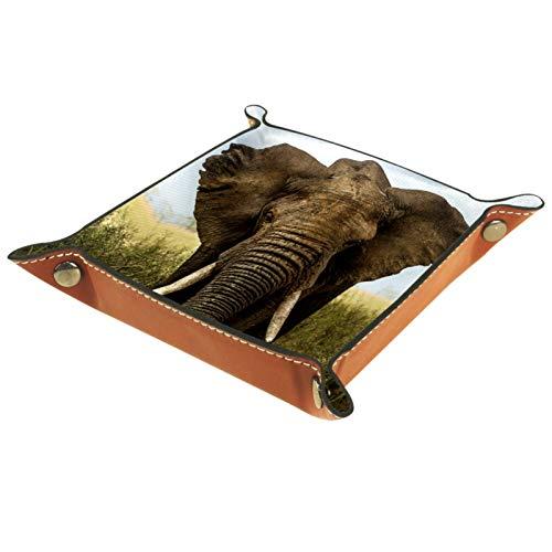 Betjänad bricka skrivbordsorganiserare – afrikansk prärie grå elefant stor – läderbyrå bricka för män och kvinnor nyckel smycken tillbehör